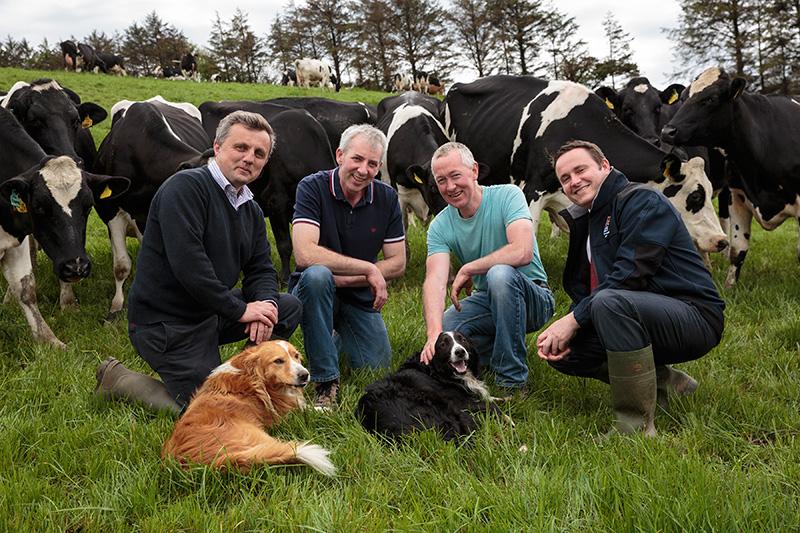 Irish Grassland - Dairy Summer Tour 2016