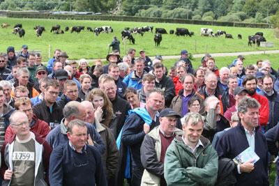 Dairy Summer Tour