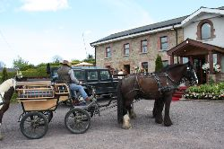 Transport to Newgrange Lodge