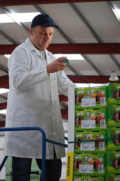 Alan from our Quality team checks recently imported kiwis from New Zealand to ensure they are at the right temperature.
