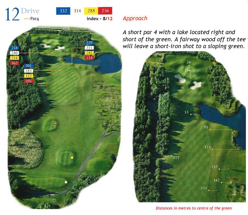 Ballyneety Golf Course Hole 12