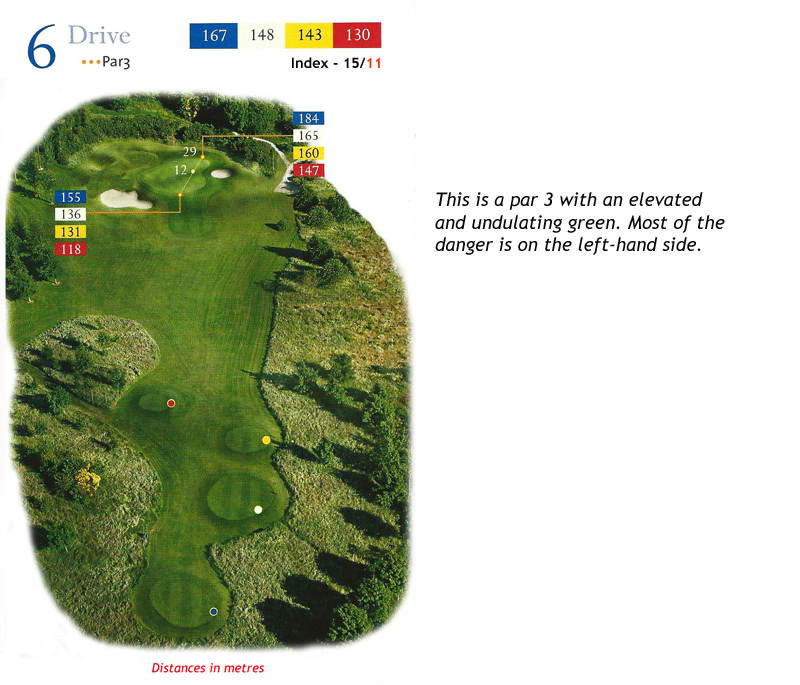 Ballyneety Golf Course Hole 6