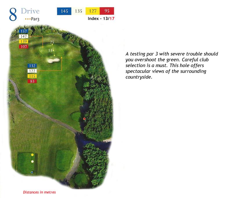 Ballyneety Golf Course Hole 8