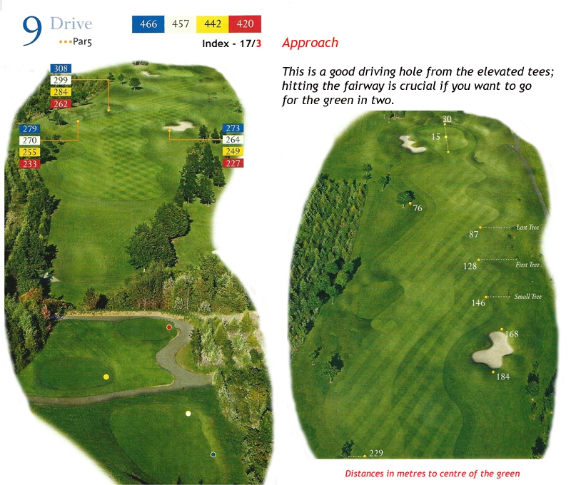 Ballyneety Golf Course Hole 9