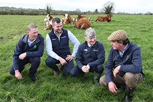 Irish Grassland Association Beef Conference & Farm Walk