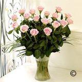 Delux Rose  Vase