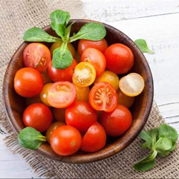 Cherry Tomato Appetiser