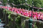 A Sea of Pink at Killaloe/Ballina Bridge