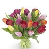 Mixed Tulip  Hand-tied Bouquet